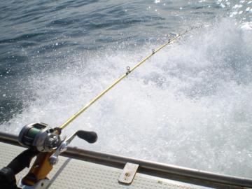 thefishing7