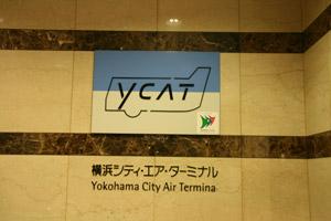 v19_ycat01.jpg