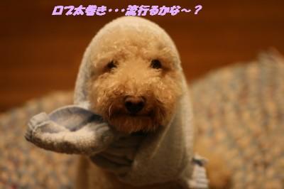 IMG_0216.jpg