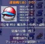 20060117175550.jpg