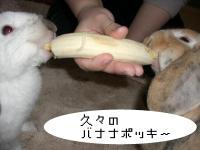 バナナポッキー