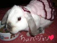 pinkdoressc_chi