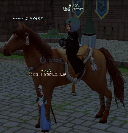 9歳児は馬にすっぽり