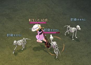 骸骨オオカミPetVr.2.33
