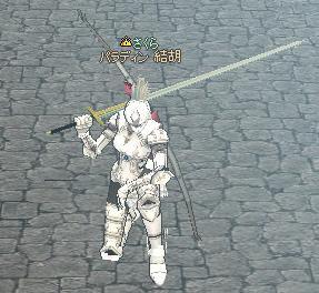 そして私は光の騎士になった