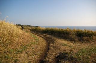 20080108 城ヶ島