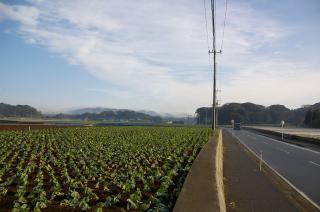 20080124 和田