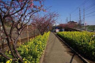 20080130 小松ヶ池