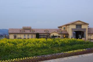 20080202 ソレイユの丘