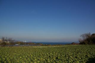 20080210 菊名配水場