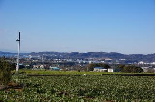 20080213 下宮田