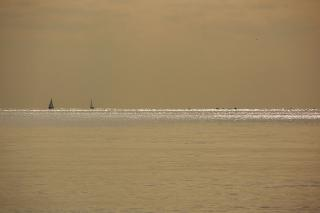 20080219 和田長浜