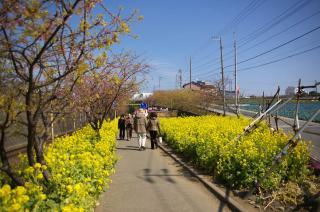 20080229 小松ヶ池