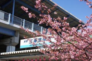20080229 三浦海岸