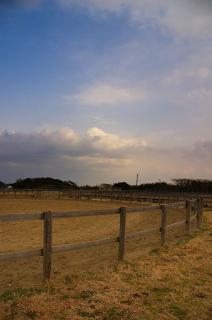 20080304 ソレイユの丘