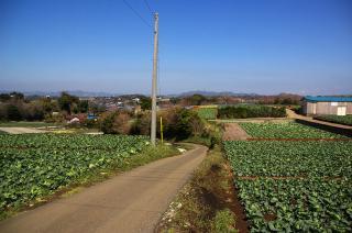 20080315 谷ノ前