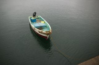 20080319 松輪