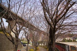 20080323 三崎口