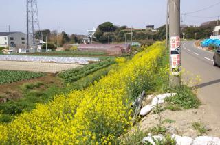 20080323 三戸