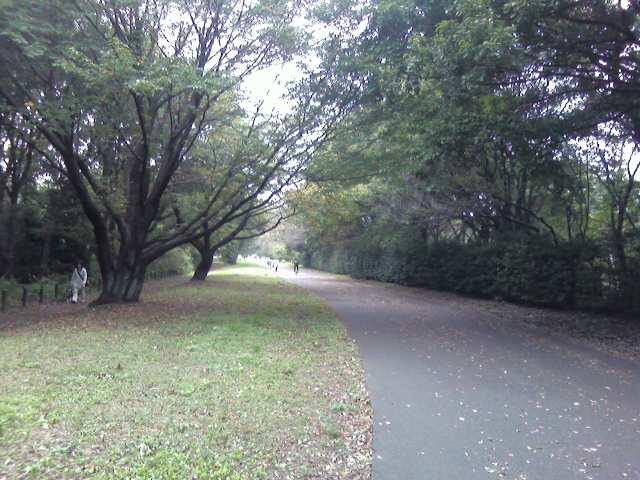 Foto2284.jpg
