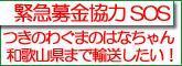 1257_2.jpg