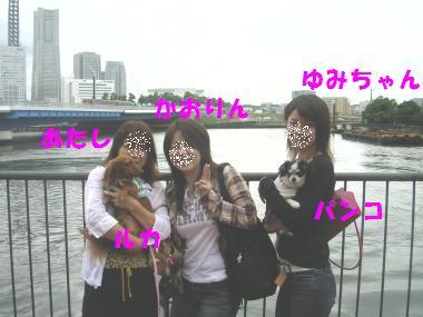20061003235645.jpg