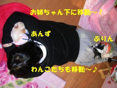 20061207225708.jpg