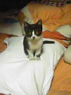 2007-10-19_20-36_04.jpg