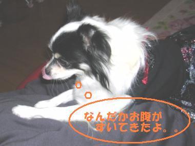20070616001449.jpg
