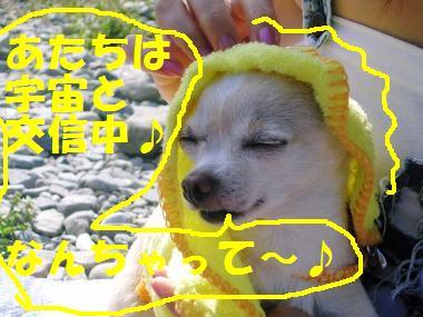 20070821013805.jpg
