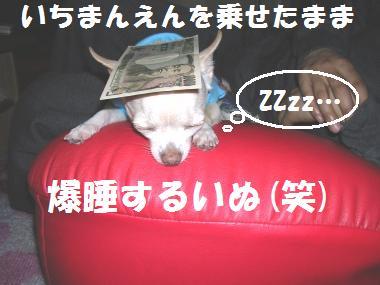 20071113113511.jpg