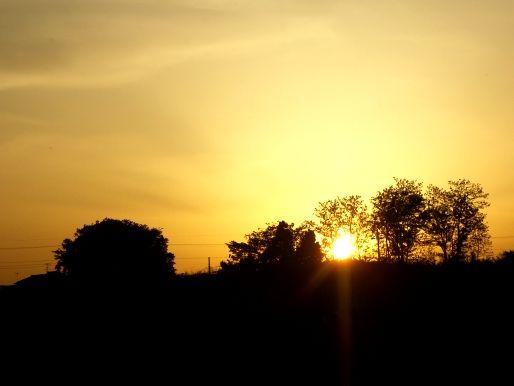 夕日の土手