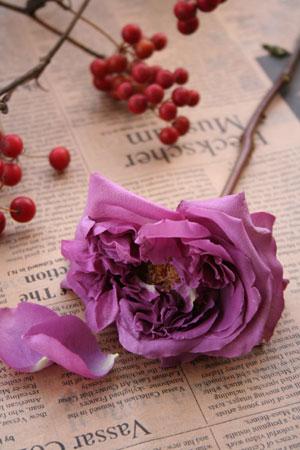 un jour de fleurs