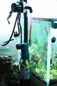 ラスボラ水槽CO2ユニット