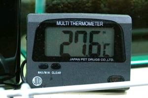 60cm水槽水温