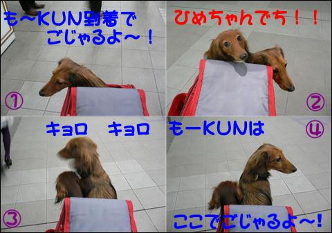 ロンバケ1