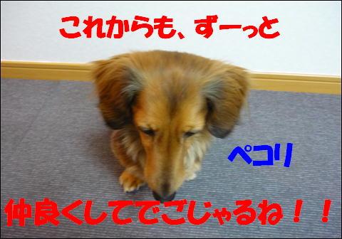 慎ちゃん6