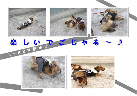 odaiba5.jpg
