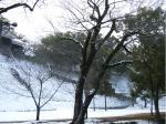 雪の熊本城