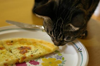 ピザとシマ