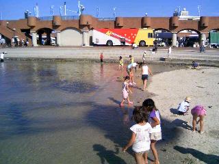 ドリプラの砂浜①