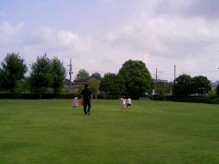 芝生の公園①