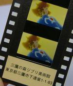 061006_siori.jpg