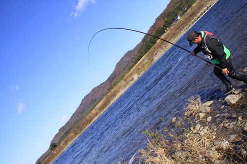 いそべ 荒川 鮭さけ釣り
