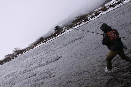 いそべ食堂 荒川 鮭釣り
