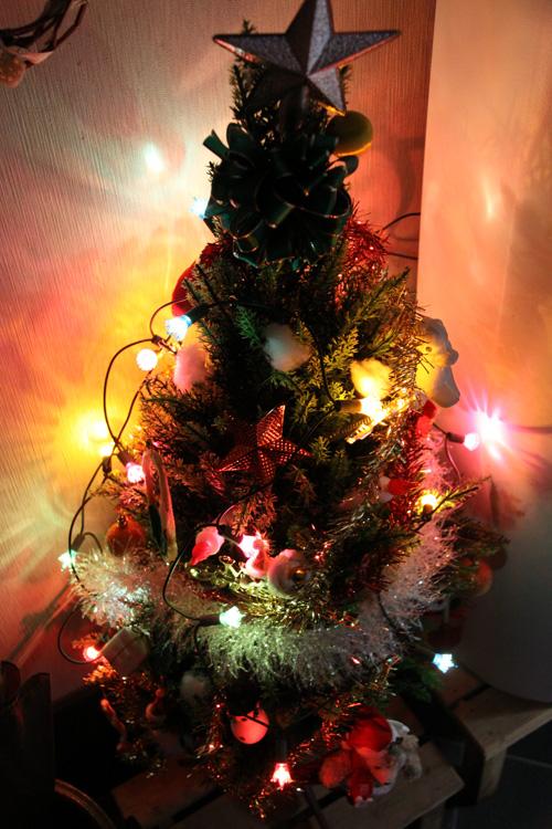 いそべ食堂 クリスマスツリー