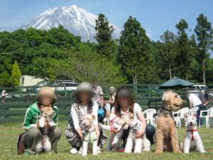nakayoshi2.jpg