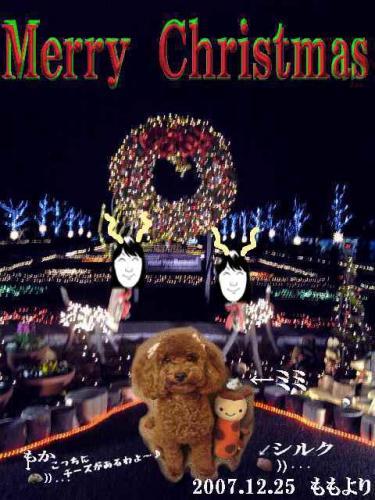 2007クリスマスカードブログ用