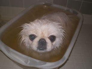 ハーブ風呂なの♪