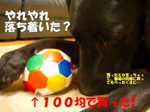 20070428104710.jpg